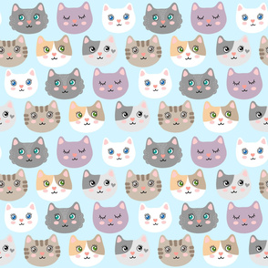 Cute cats - on blue