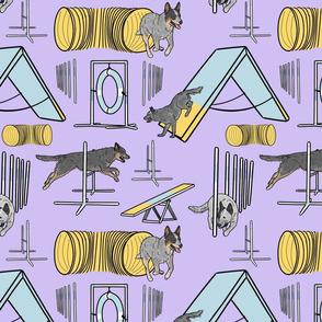 Simple blue heeler Australian Cattle Dog agility dogs - purple