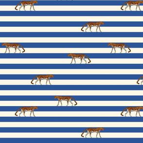 luipaard op strepen