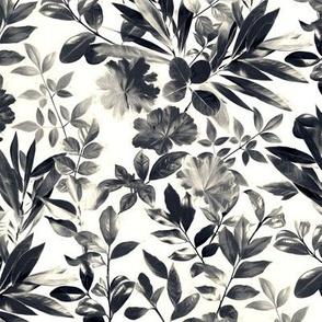 Split Toned Black and White Botanical Garden - medium