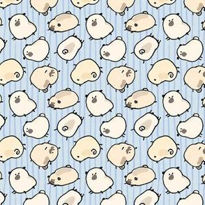 Pinstripe Pugs - blue