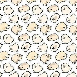 Pinstripe Pugs - white