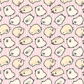 Pinstripe Pugs - pink
