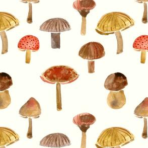 forest mushrooms on cream
