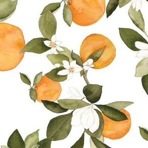 Medium Orange blossom 2
