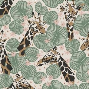 Giraffe in Jungle / Magic Jungle