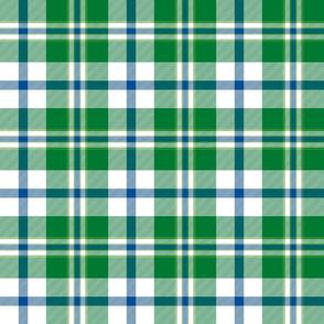 "Cooper dress dance tartan, 6"" custom lakeside green"