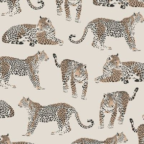 Leopards / Magic Jungle