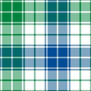 "Davidson  tartan, 8"" custom lakeside colors #1"
