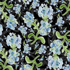 Watercolor Plumbago Flowers on Black