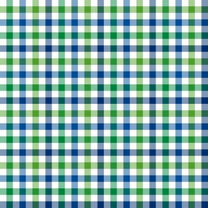 Lakeside colors gingham