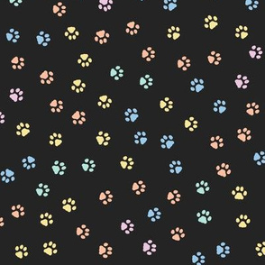Colorful Cats Paw Prints on black