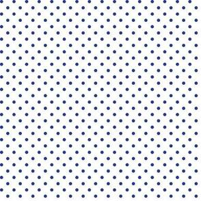Royal Blue and Bright Orange Mini dot3