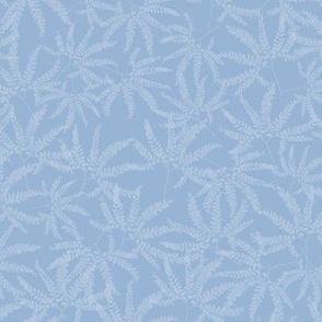 Maidenhair Fern Prints on Baby Blue