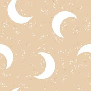 Winter Moon Stars on Clay