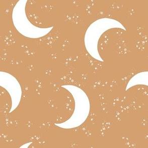 Winter Moon Stars on Earth
