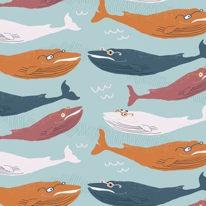Whales with glasses