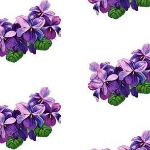 Vintage violets 3