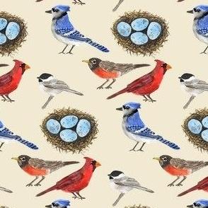 Backyard Winter Birds smaller