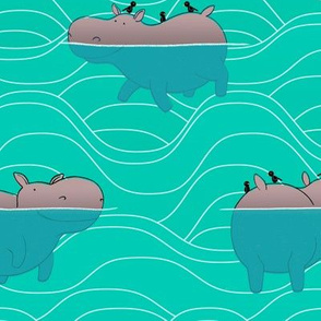 Hippo's and Waves