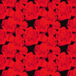 Joy _ Rojo