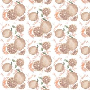 Blood Orange_Sepia_Winter_Fruit_Tea Towels_Dining