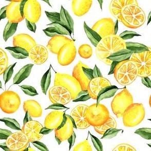 Summer Lemons Field