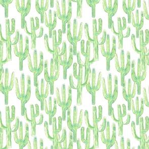 Packed Saguaros White
