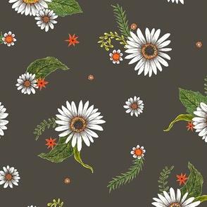 daisies on dark
