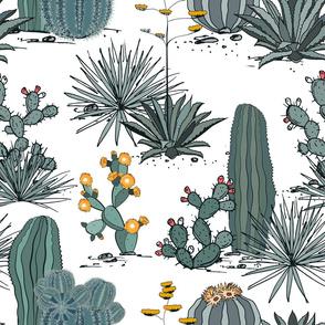 cacti_landscape