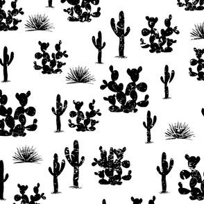 Grange saguaro, agaves, and opuntia cactuses on white background.