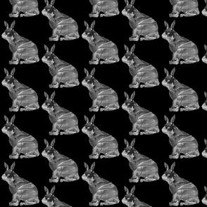 Dark Frost Snowshoe Hare