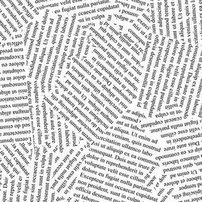 Writer's Block // Lorem Ipsum on White