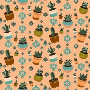 Mid Century Modern Potted Succulents and Cacti in Peach