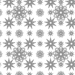 Snowflake2-Collection2020-Star2_Monogroom_1500