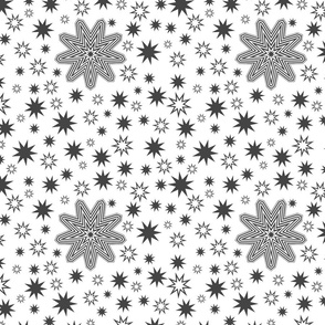 Snowflake2-Collection2020-Star3_Monogroom_1500