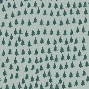 christmas trees winter