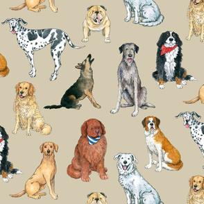 Big Dogs Pattern on khaki