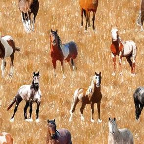 Horses 3 - 10 inch