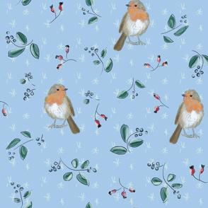 robin blue big
