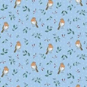 robin small