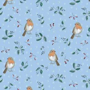 robin blue