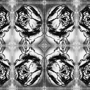 Charcoal_rose
