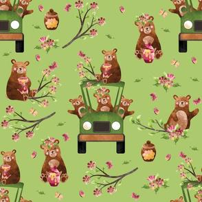 "12"" Honey Bears in Car | Pink on Lt Green"
