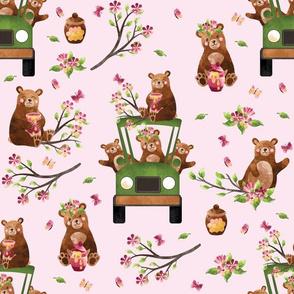"12"" Honey Bears in Car | Pink"