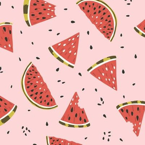 Watermelon slices and seeds on pink
