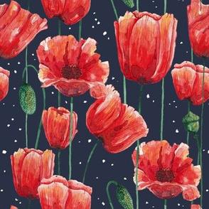 Poppies Garden