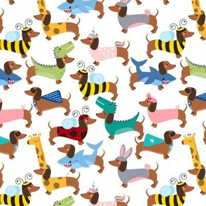 dachshund dogs in costumes small