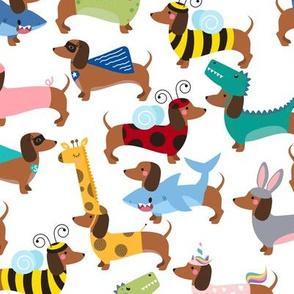 dachshund dogs in costumes medium