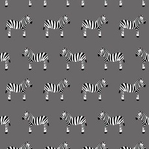 Grey Zebras